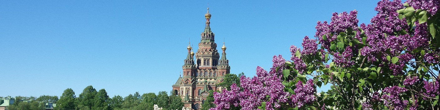 DMC Russia