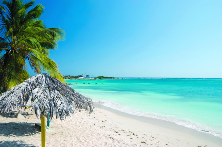 PALM-BEACH-ARUBA eco dms dmc
